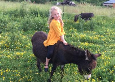 Girl Riding Donkey   Second Wind Country Inn, Ashland, WI